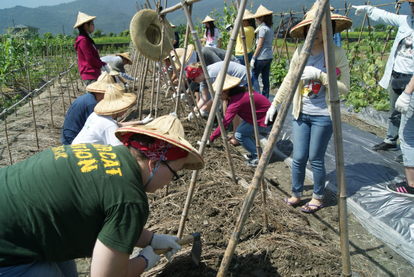 Saint Vincent and Cardinal Tien students till and plant at the organic farm.