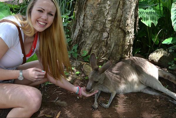 Katie Kohler with a Kangaroo - internship in Australia