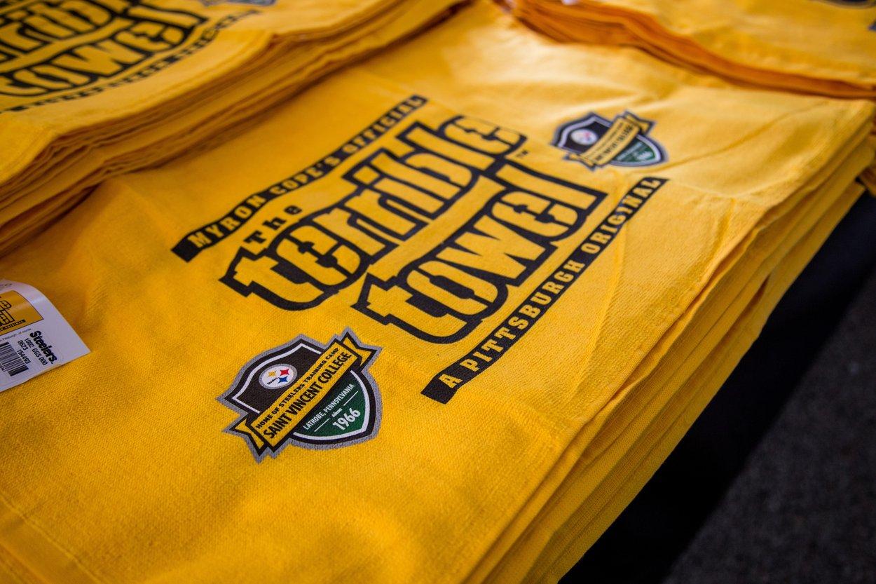 2017-7-28 Steelers Training Camp-2