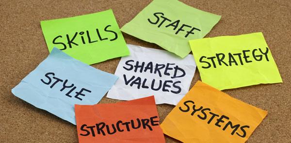 7S-organizational-culture.jpg